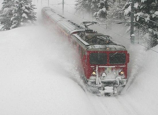 Пассажир бежал за поездом полуголый 7 км по тайге