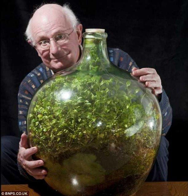 40 лет в бутылке