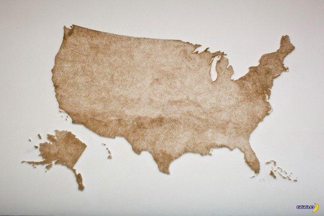 Арт - США из спичек