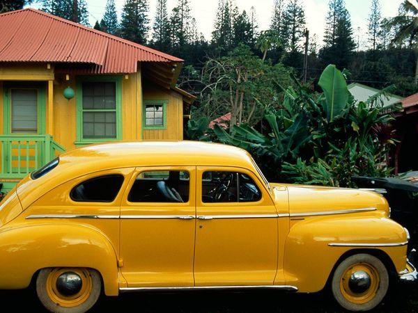 Банановый цвет на фото