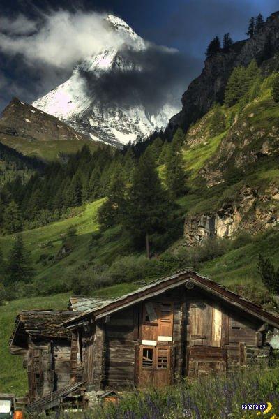 Лесные домики