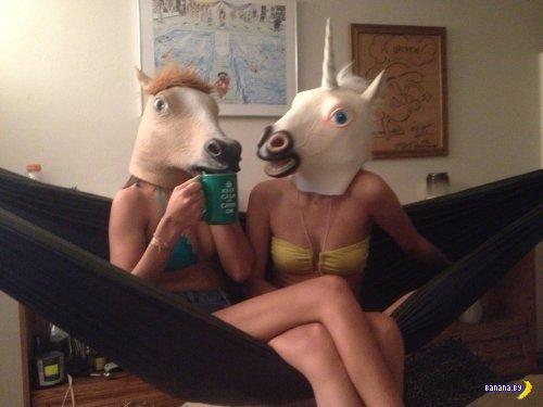 Лошадиные головы