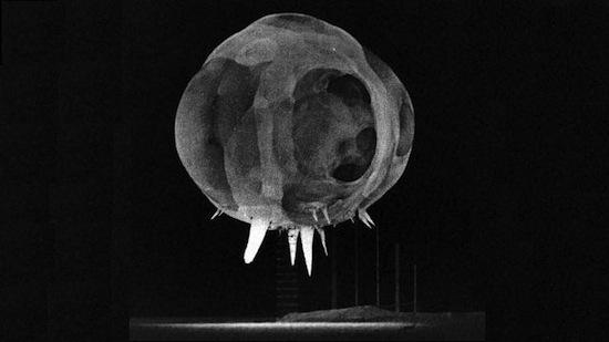 На фотографиях «ядерного гриба» в первую секунду после взрыва можно заметить таинственные шипы