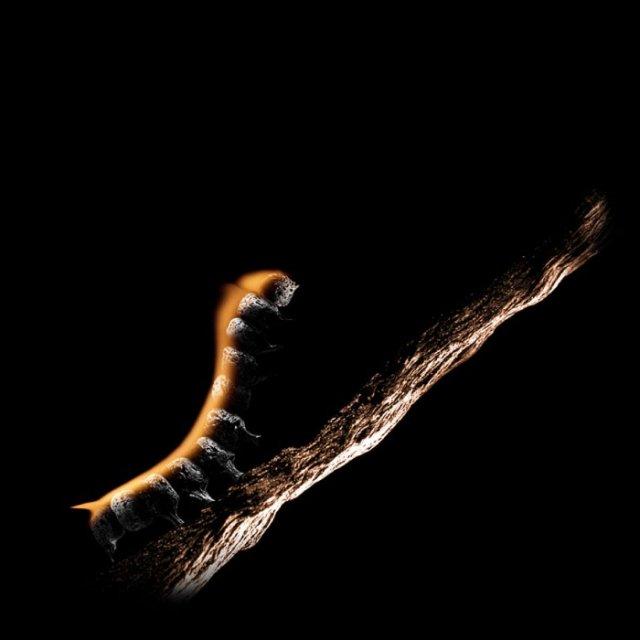 Красота сгоревших спичек