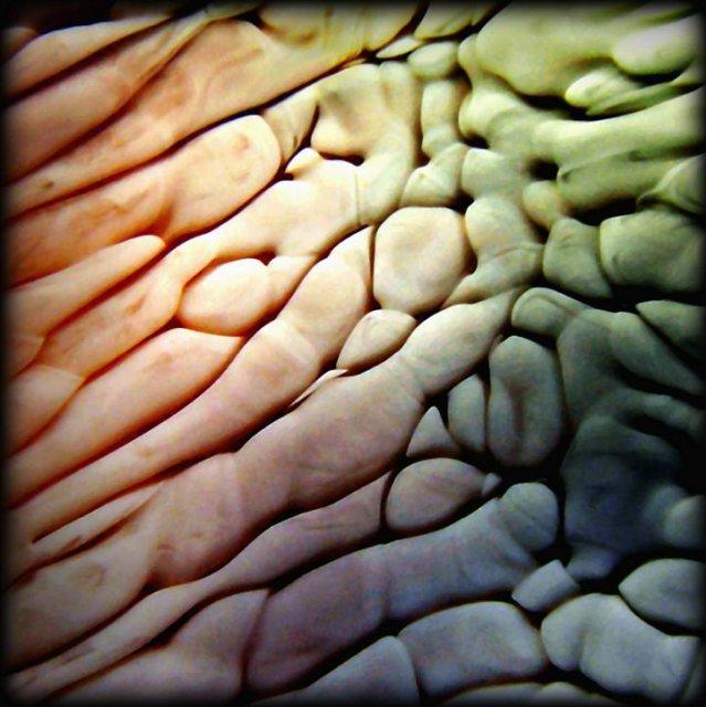 Макрофото жидкостей