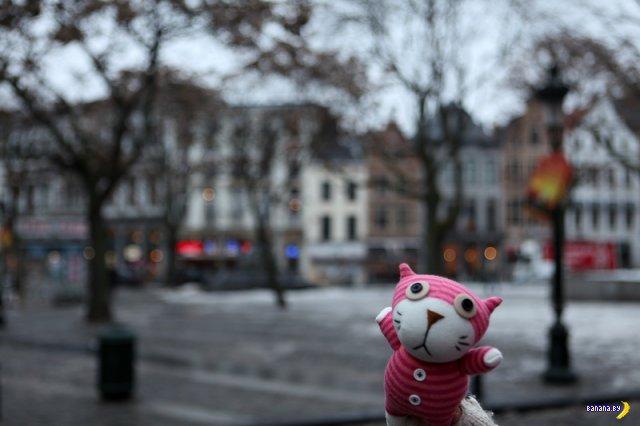 Большое Европейское путешествие Кота