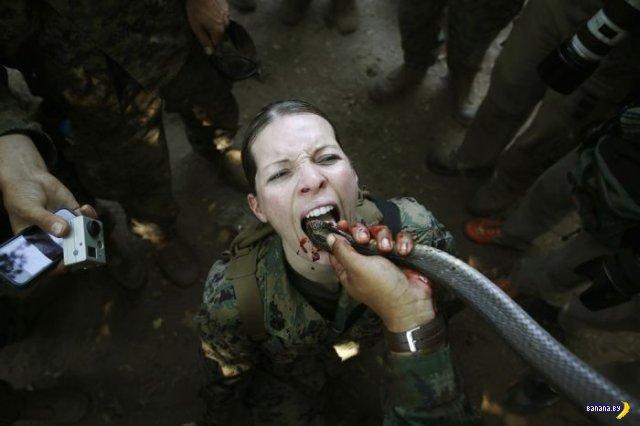 Морпехи США пьют кровь!