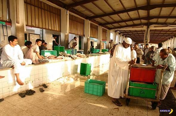 Как ловят рыбу в Саудовской Аравии