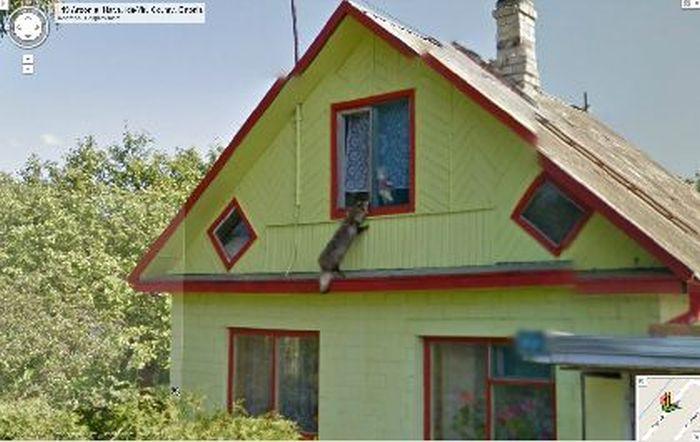 Всё покажет Google Street