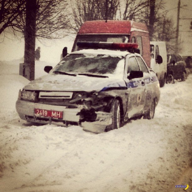 В Беларуси из-за снежного шторма отменили занятия в школах
