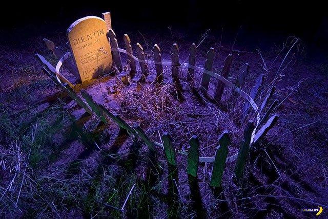 Ночь на кладбище домашних животных