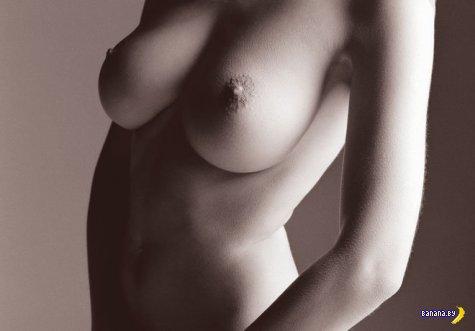 Путеводитель по женской груди