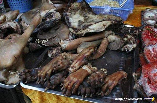 Колбаса из собачатины и прочие деликатесы
