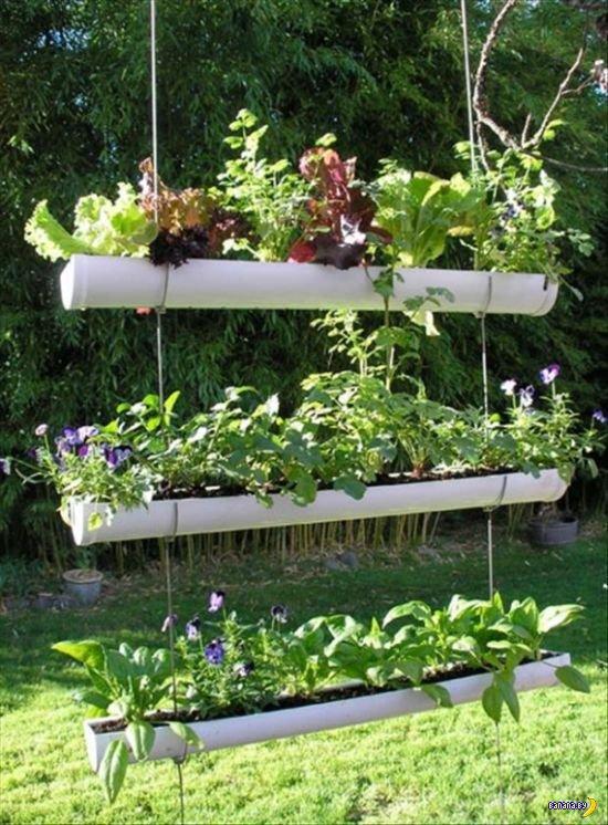 Новые идеи для сада своими руками фото