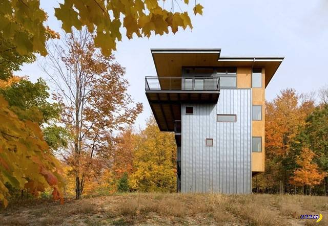 Неожиданный дом в лесу