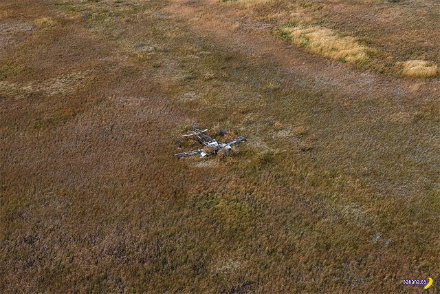 Мертвые железные птицы
