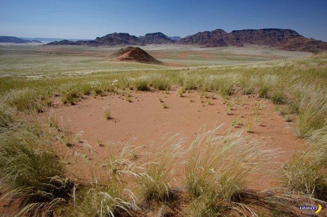 Загадочные кольца в Намибии