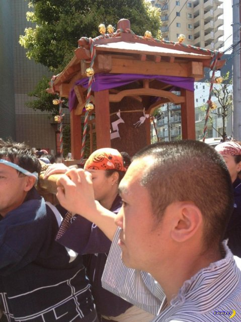Японский парад членов