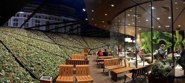 Космический McDonald's в Батуми