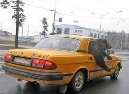 Мингорисполком выступает за ужесточение требований к автомобилям такси