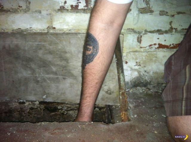 Сюрприз в подвале старого дома