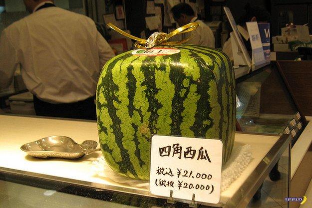 """Японцы и """"подарочная еда"""""""