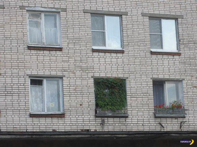 А тем временем в России - 6