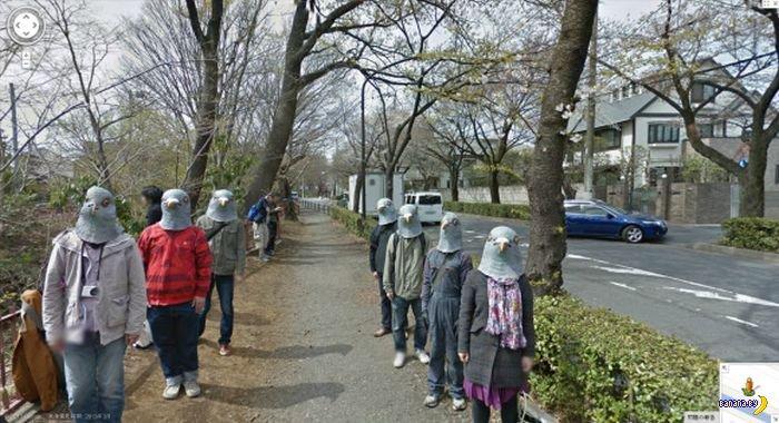 Люди-голуби в Японии