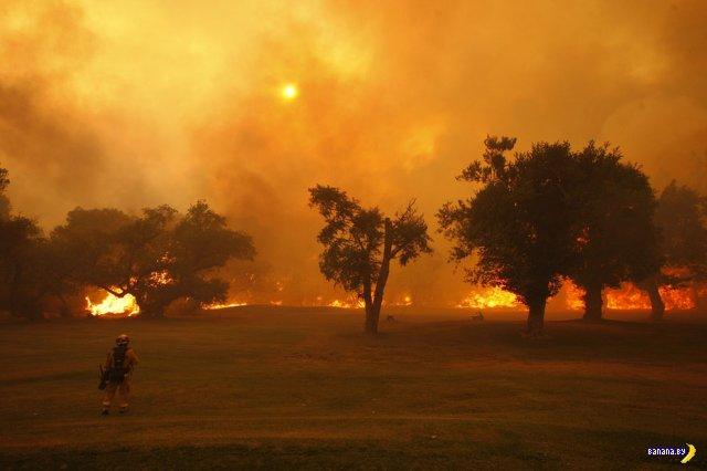 Жуткая красота пожара