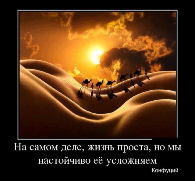 Демотиваторы - 9