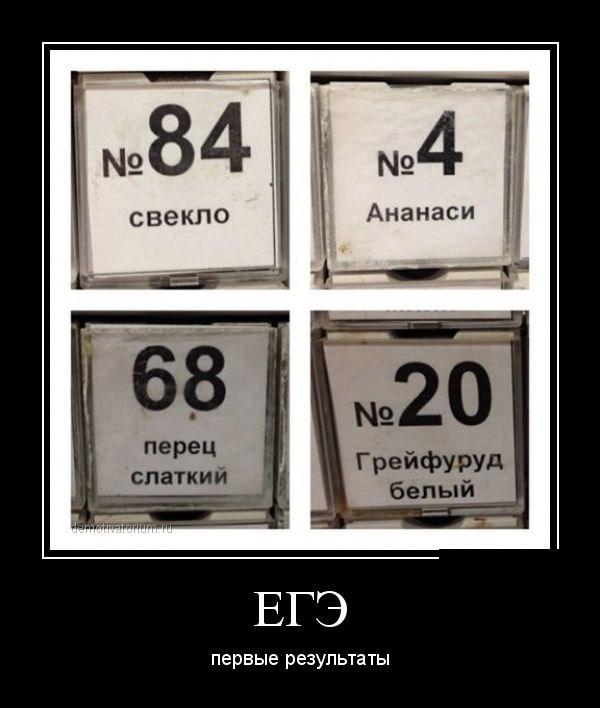 Демотиваторы - 11