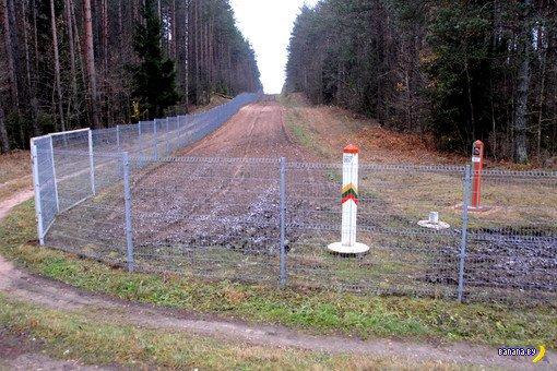 Литва хочет отгородится от беларуских животных