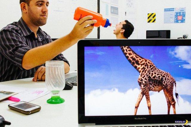 Новое развлечение офисных работников