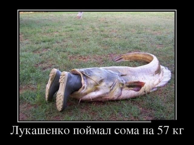 Демотиваторы - 23