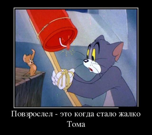 Демотиваторы - 28