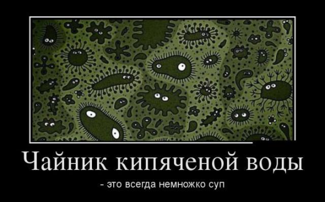 Демотиваторы - 29