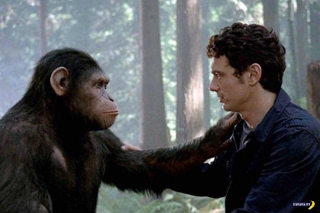 Лучшие 10 научно-фантастических фильмов этого века