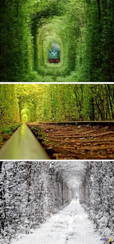 9 самых интересных железных дорог