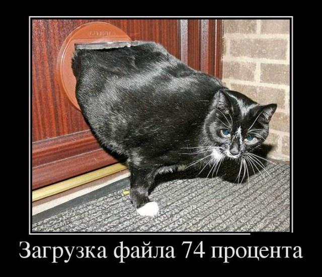 Демотиваторы - 34