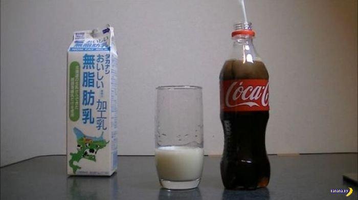 Что будет, если смешать Coca-Cola и молоко