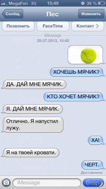 Если бы собаки писали SMS