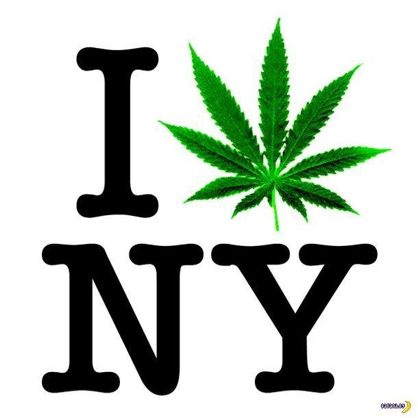 Следующим мэром Нью-Йорка будет наркоман?