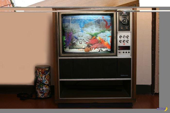 Телевизор теперь показывает рыбок