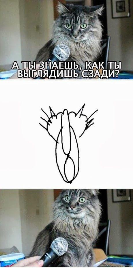 Комиксы и рожи - 15