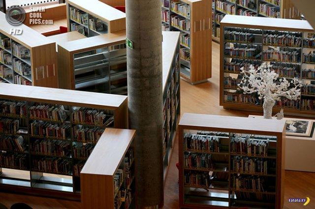 Самая большая библиотека Европы