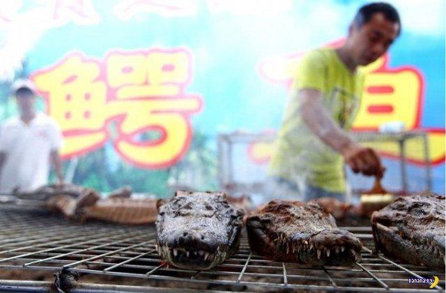 Не любят крокодилы китайцев