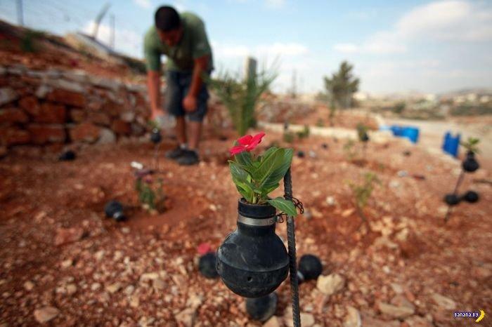 Палестинская смекалка