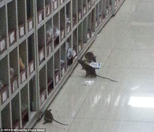 Китайская больница через окно