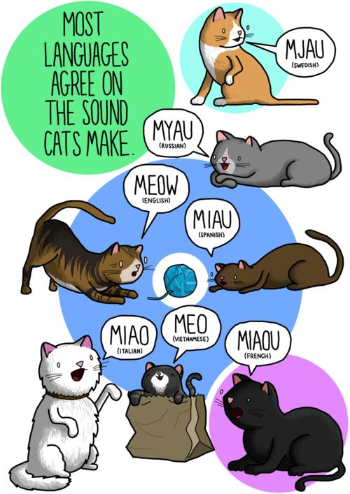 Переводчик для животных