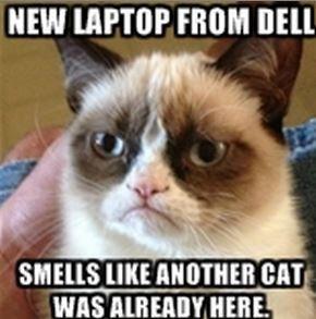 Неожиданная проблема с новыми ноутбуками Dell